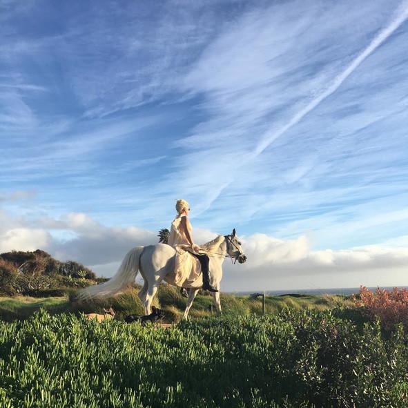 Lady Gaga, Horse, Instagram