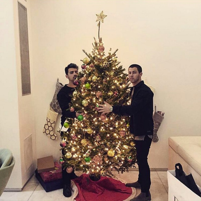 Joe Jonas, Nick Jonas, Christmas 2015