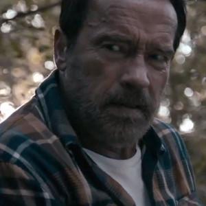 Aenold Schwarzenegger, Maggie