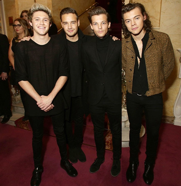New One Direction, Harry Styles, Niall Horan, Liam Payne, Louis Tomlinson