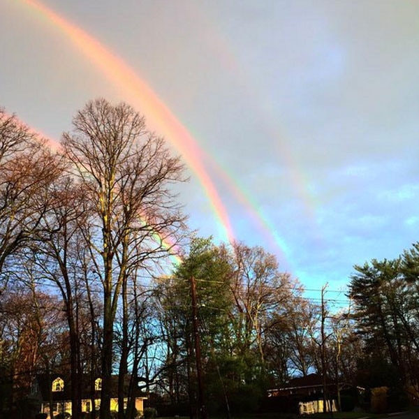 Quadruple Rainbow, Twitter