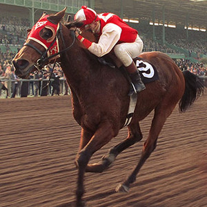 Famous Horses, Seabiscuit