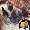 Lady Gaga, Taylor Kinney, Instagram