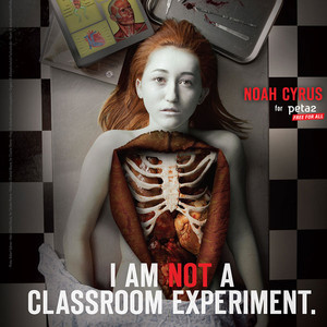 Noah Cyrus, PETA, Dissection Kills