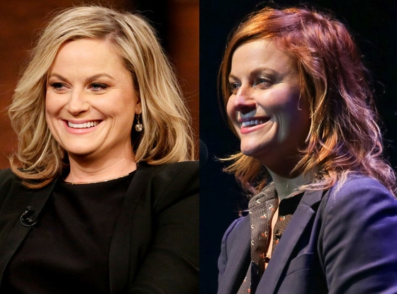 Amy Poehler, Hair