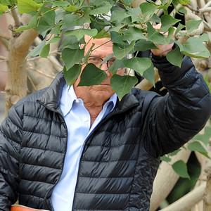 Dustin Hoffman, Hide and Seek