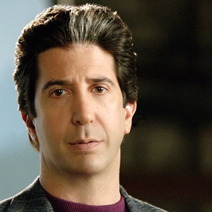 American Crime Story, David Schwimmer
