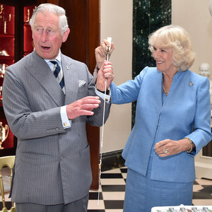 Prince Charles, Camilla Duchess