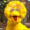 Big Bird Rapping, Sesame Street, YouTube