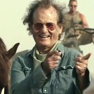 Bill Murray, Rock the Kasbah
