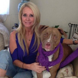 Kim Richards, Kingsley