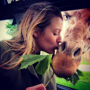 Blake Lively, Giraffe, Instagram