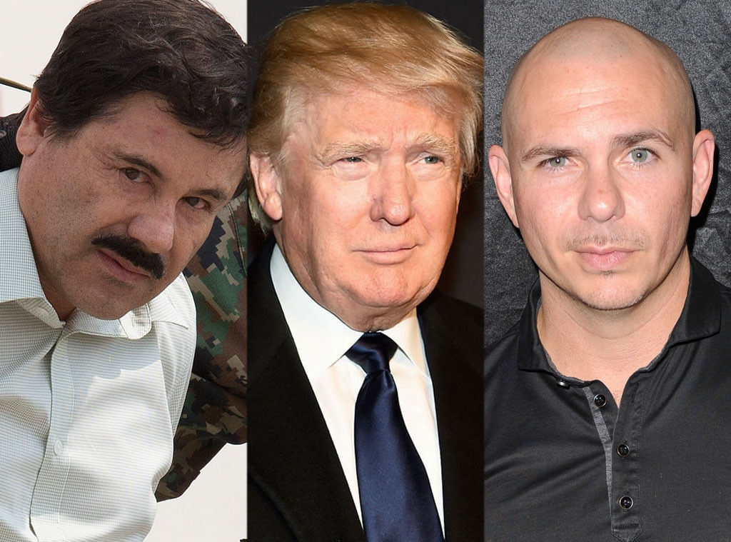 Pitbull, El Chapo, Donald Trump