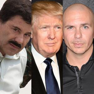 Pitbull, El Chapo, Donald Trump