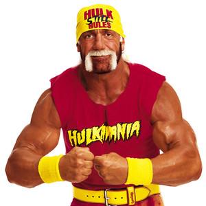 Hulk Hogan, Celebs that started as WWE stars