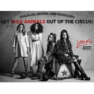 Little Mix, PETA2