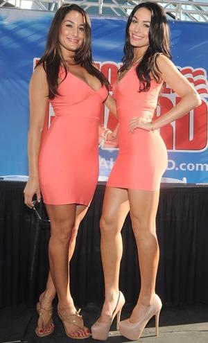 Nikki Bella, Brie Bella, Bella Twins, SummerSlam, WWE Total Divas