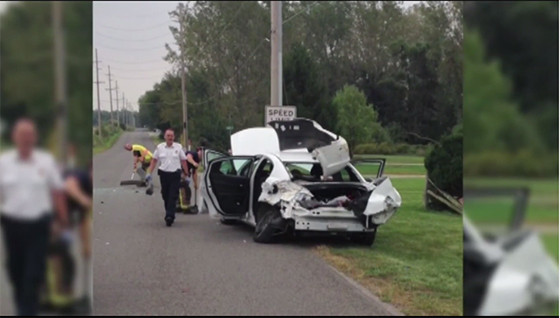 Spider Car Crash