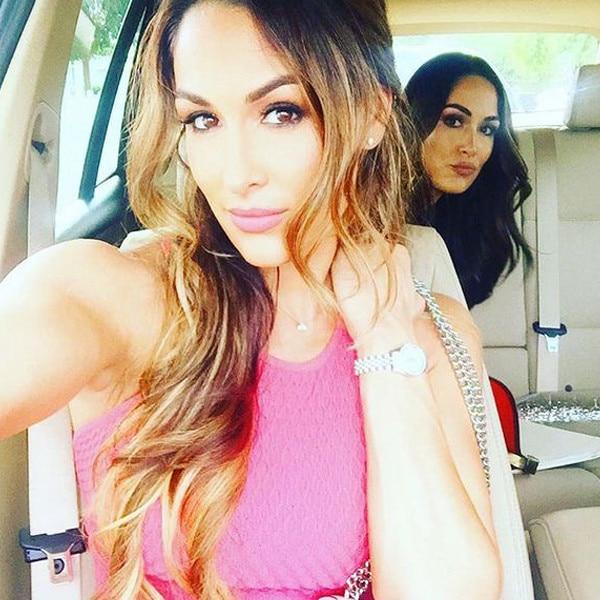 Nikki Bella, Brie Bella, Instagram