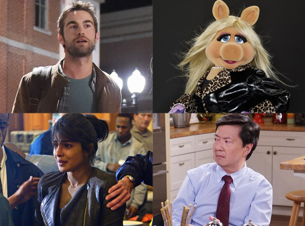 Blood and Oil, The Muppets, Quantico, Dr. Ken