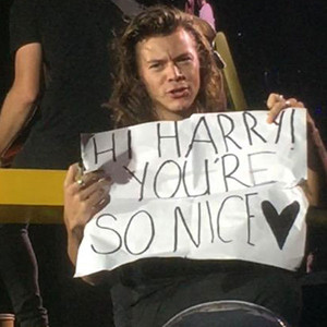 Harry Styles, Grammar