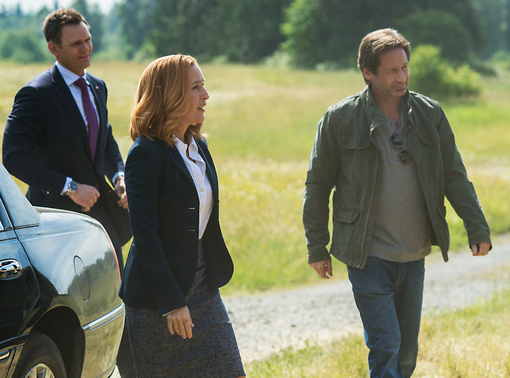 The X-Files, Gillian Anderson, David Duchovny