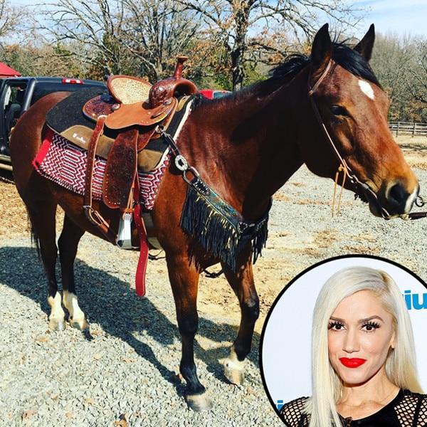 Gwen Stefani, Instagram