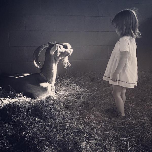 Channing Tatum, Everly, Goat, Instagram