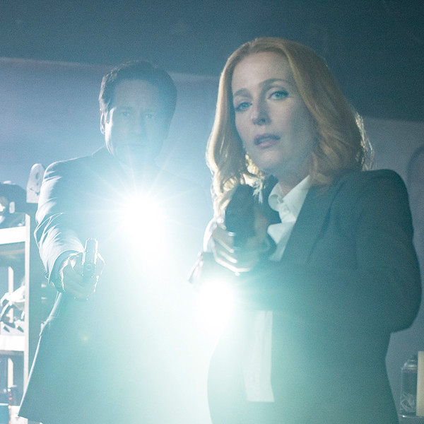 The X-Files, David Duchovny, Gillian Anderson