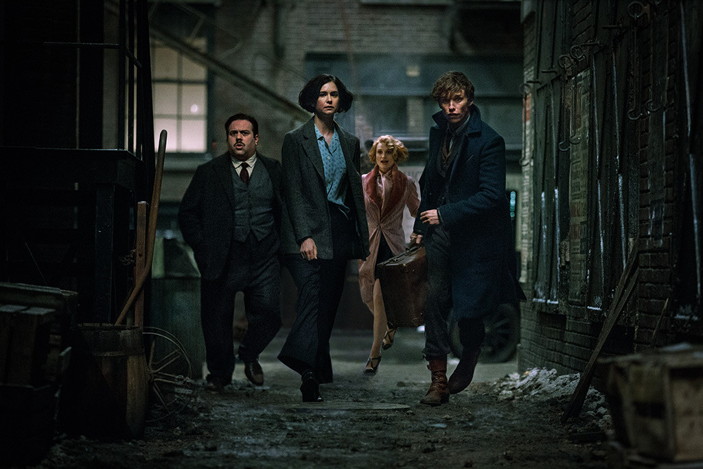 Fantastic Beasts and Where to Find Them, Dan Fogler, Katherine Waterston, Alison Sudol, Eddie Redmayne
