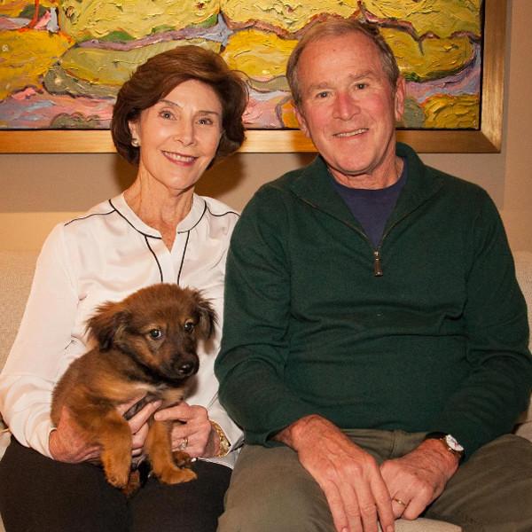George W. Bush, Laura Bush, Freddy
