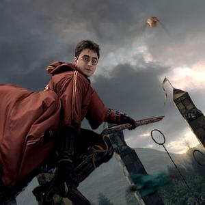 Quidditch, Harry Potter