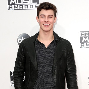 Shawn Mendes, AMAs, 2016 American Music Awards, Arrivals