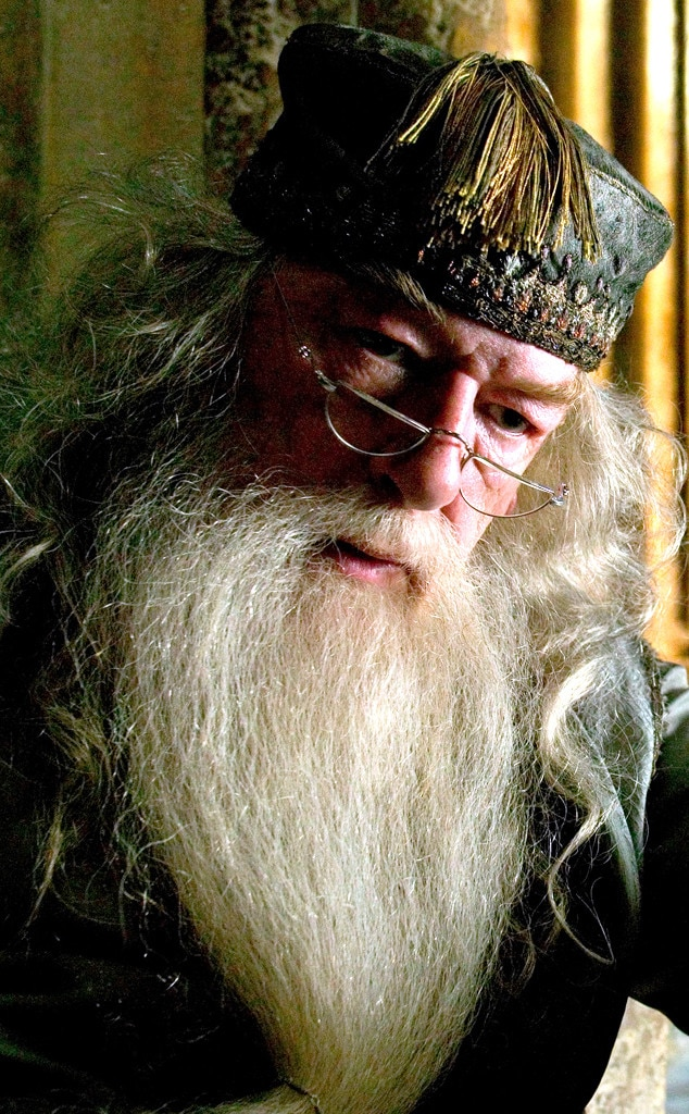 Dumbledore, Harry Potter