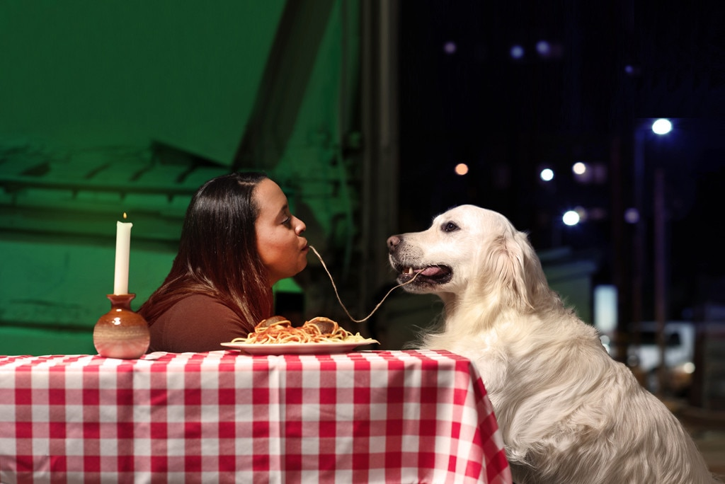 Dogs in Movies