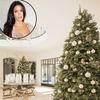 Kourtney Kardashian, Christmas Trees
