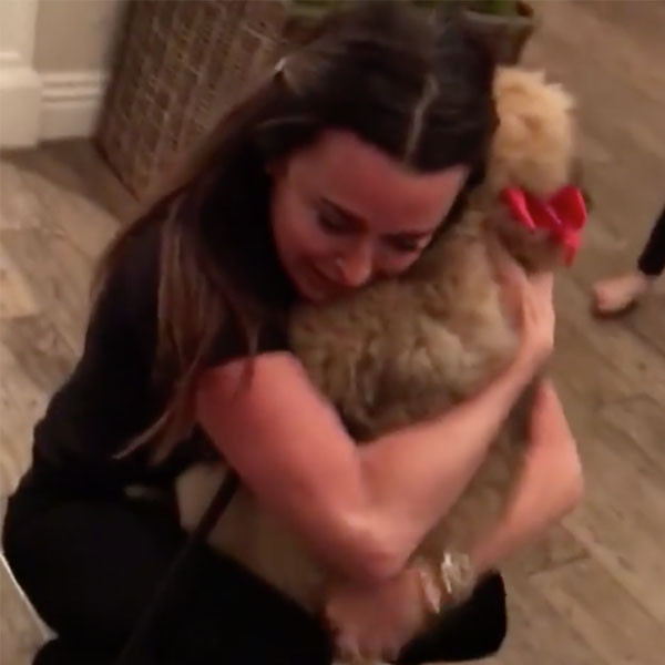 Kyle Richards, Holiday, Christmas, Dog, Surprise