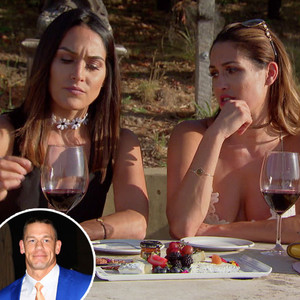 Nikki Bella Wants to Start a Wine Business, But Brie Says She's Just Trying to Keep Up With John Cena: ''I'm Sick of You Saying That!''