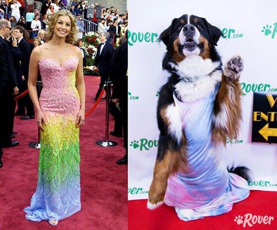 Oscar Dogs