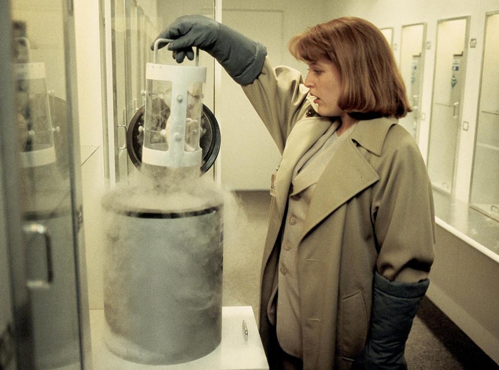 The X-Files, Gillian Anderson