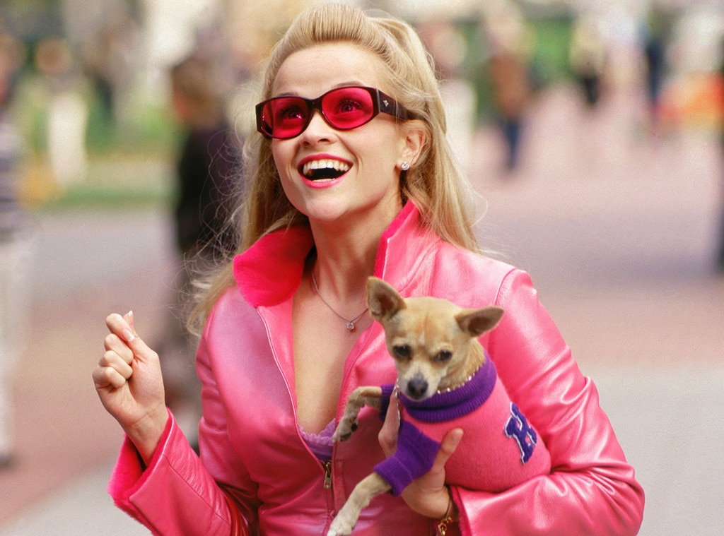 Reese Witherspoon Has Best Reaction to This Journalist's Dissertation on 'Legally Blonde'