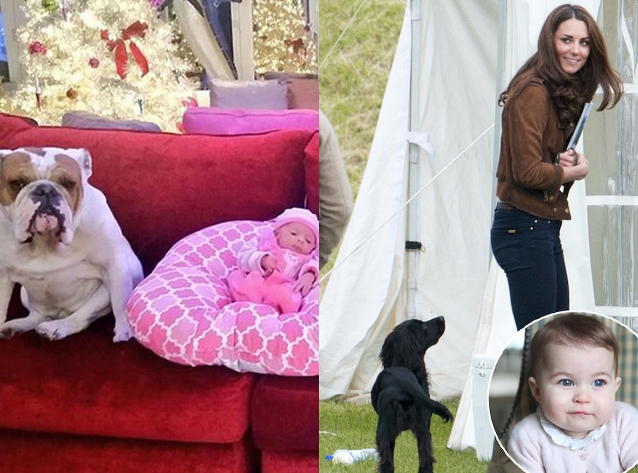 Catherine, Duchess Of Cambridge, Lupo, Chanel, Princess Charlotte