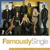Famously Single show package-landing page brick