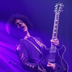 Prince, Concert
