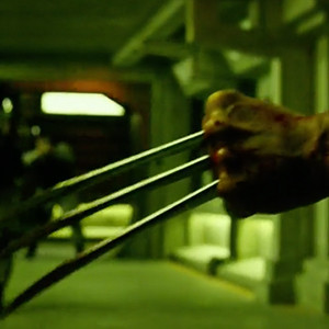 X-Men: Apocalypse, Wolverine