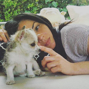 Olivia Munn, Puppy, Frank Rodgers