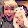 Taylor Swift, cat selfie, Instagram