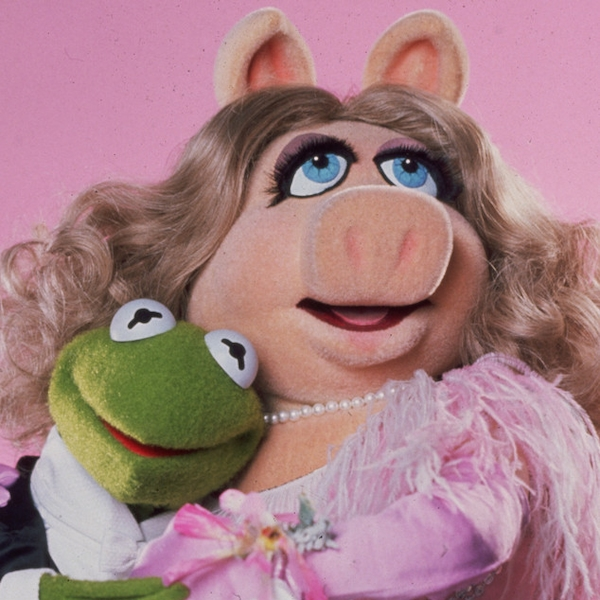 Kermit The Frog - News on gender, culture, and politics ...