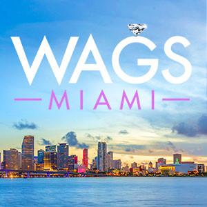 WAGs Miami