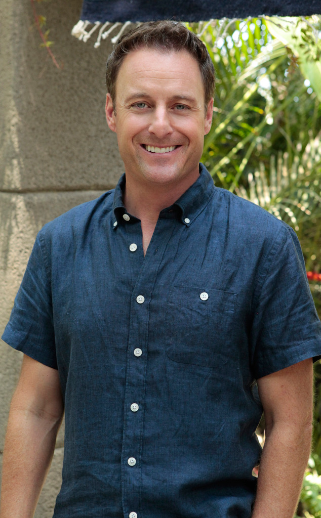 Chris Harrison, Bachelor in Paradise